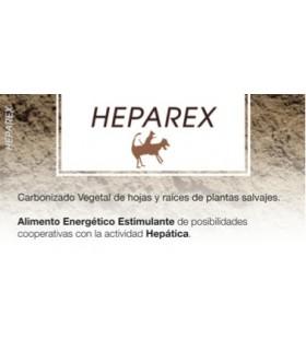 HEPAREX