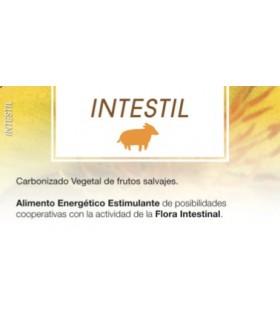 INTESTIL - 60 Capsulas (PADRE CESAR)