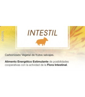 INTESTIL