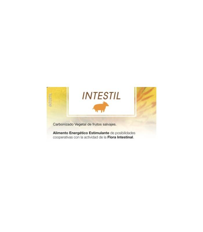 INTESTIL